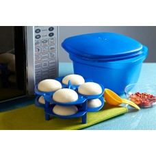 Idli Tray (1 pc)